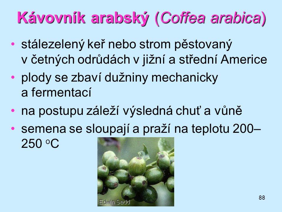 88 Kávovník arabský (Coffea arabica) •stálezelený keř nebo strom pěstovaný v četných odrůdách v jižní a střední Americe •plody se zbaví dužniny mechan