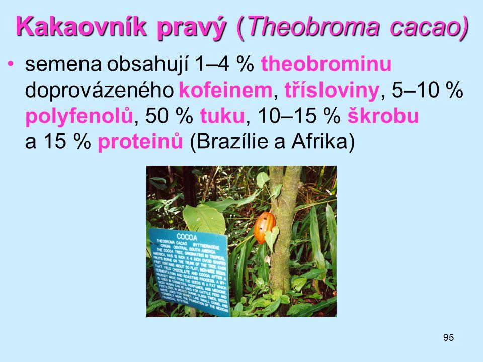 95 Kakaovník pravý (Theobroma cacao) •semena obsahují 1–4 % theobrominu doprovázeného kofeinem, třísloviny, 5–10 % polyfenolů, 50 % tuku, 10–15 % škro