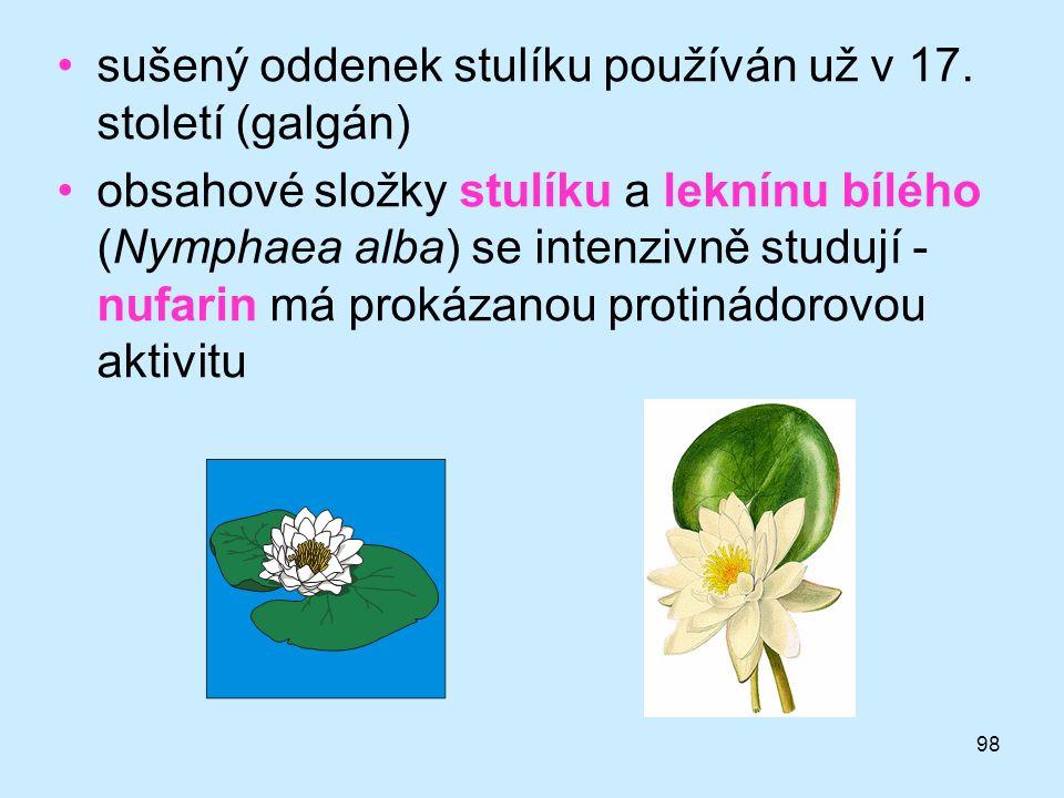 98 •sušený oddenek stulíku používán už v 17. století (galgán) •obsahové složky stulíku a leknínu bílého (Nymphaea alba) se intenzivně studují - nufari