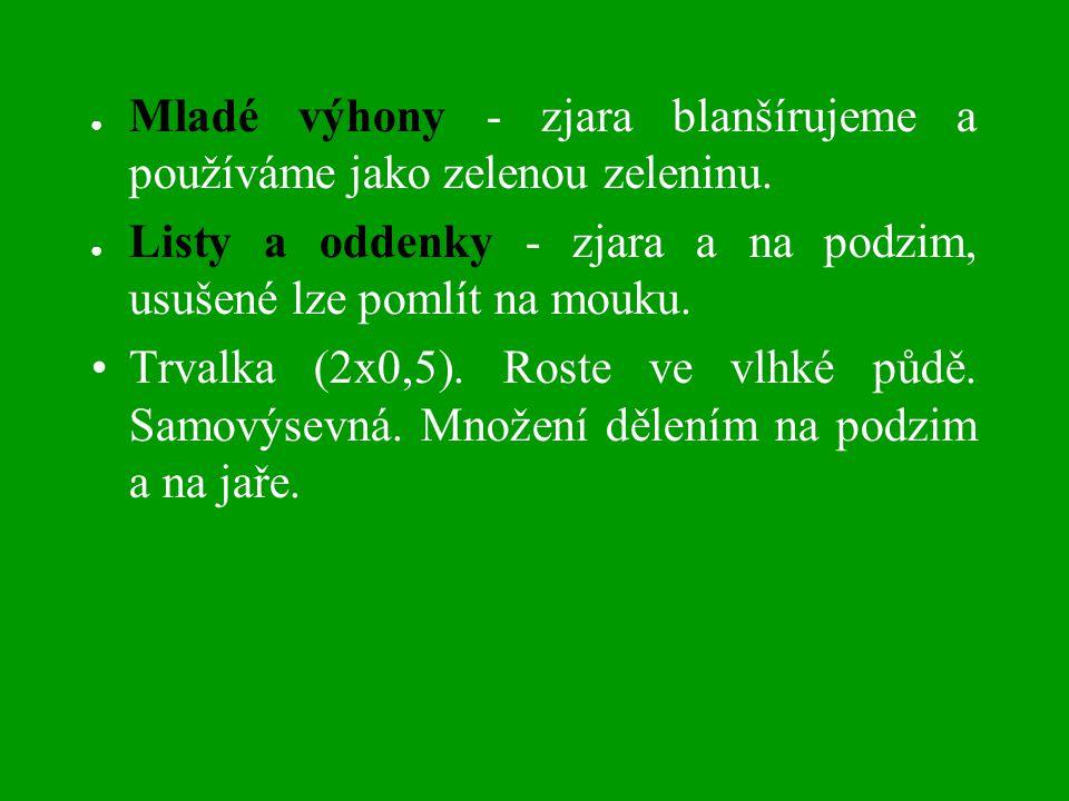 ● Mladé výhony - zjara blanšírujeme a používáme jako zelenou zeleninu.