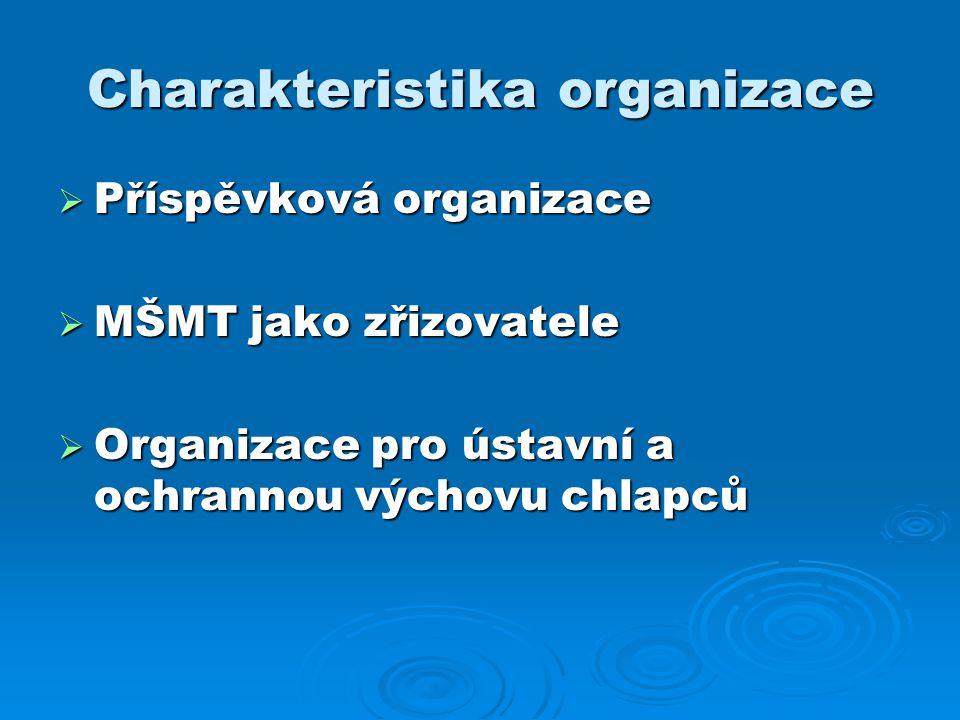 Charakteristika organizace  Příspěvková organizace  MŠMT jako zřizovatele  Organizace pro ústavní a ochrannou výchovu chlapců