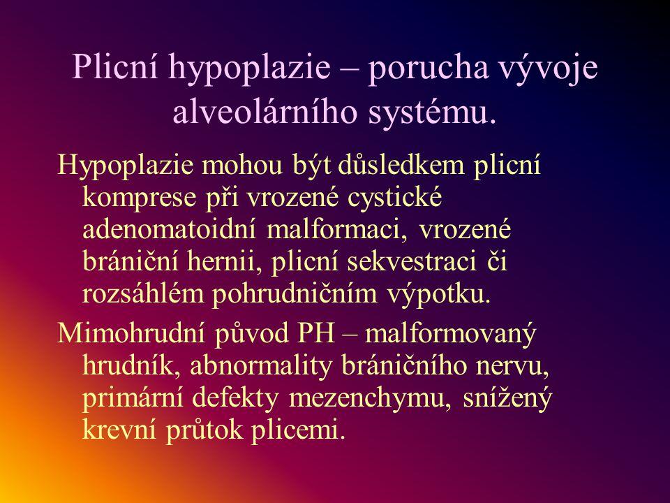 Plicní hypoplazie – porucha vývoje alveolárního systému. Hypoplazie mohou být důsledkem plicní komprese při vrozené cystické adenomatoidní malformaci,