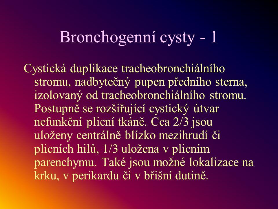Bronchogenní cysty - 1 Cystická duplikace tracheobronchiálního stromu, nadbytečný pupen předního sterna, izolovaný od tracheobronchiálního stromu. Pos