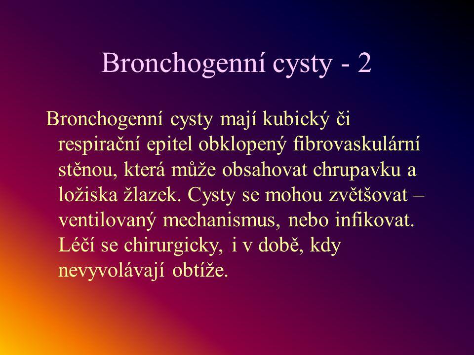 Bronchogenní cysty - 2 Bronchogenní cysty mají kubický či respirační epitel obklopený fibrovaskulární stěnou, která může obsahovat chrupavku a ložiska
