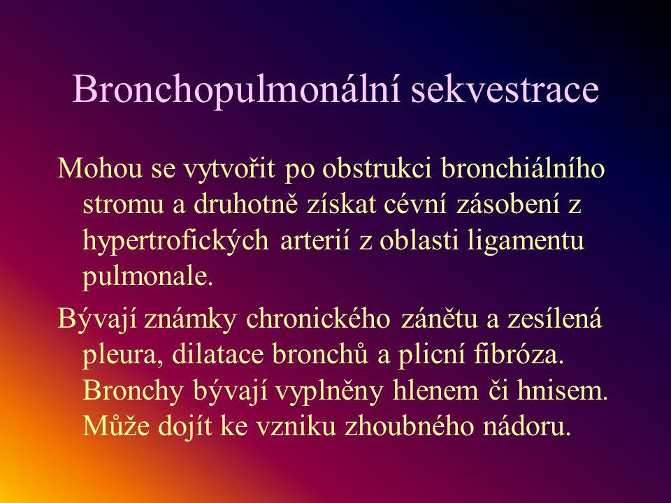 Bronchopulmonální sekvestrace Mohou se vytvořit po obstrukci bronchiálního stromu a druhotně získat cévní zásobení z hypertrofických arterií z oblasti
