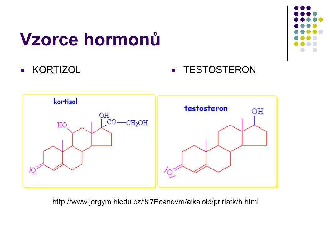 Vzorce hormonů  KORTIZOL  TESTOSTERON http://www.jergym.hiedu.cz/%7Ecanovm/alkaloid/prirlatk/h.html