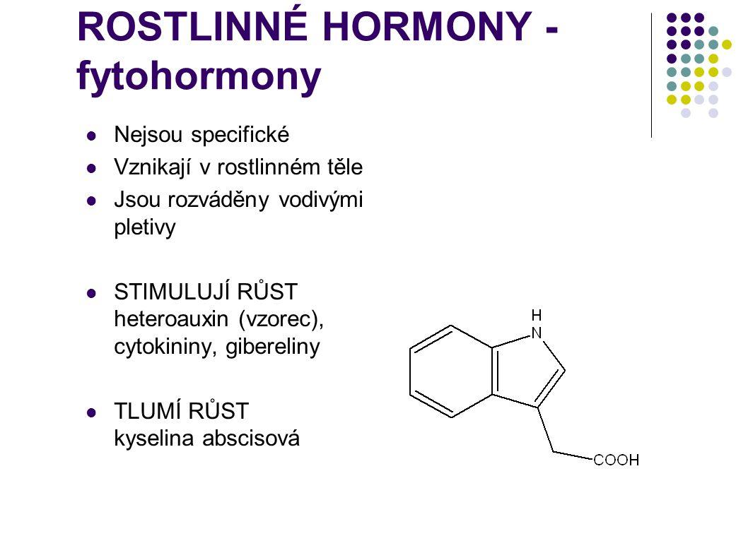 ROSTLINNÉ HORMONY - fytohormony  Nejsou specifické  Vznikají v rostlinném těle  Jsou rozváděny vodivými pletivy  STIMULUJÍ RŮST heteroauxin (vzore