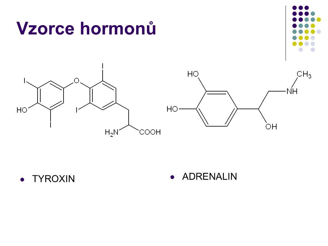 HORMONY odvozené od peptidů a bílkovin ŽLÁZAHORMONÚČINEK PŘIŠTÍTNÁ TĚLÍSKAPARATHORMONZVYŠUJE HLADINU VÁPNÍKU SLINIVKA BŘIŠNÍINZULÍNREGULUJE HLADINU GLUKOSY V KRVI NEUROHYPOFÝZAOXYTOCINVYVOLÁVÁ STAHY DĚLOŽNÍHO SVALSTVA NEUROHYPOFÝZAANTIDIURETICKÝ HORMON STIMULUJE RESORPCI VODY V LEDVINÁCH ADENOHYPOFÝZASOMATOTROPINPODPORUJE RŮST A TVORBU BÍLKOVIN