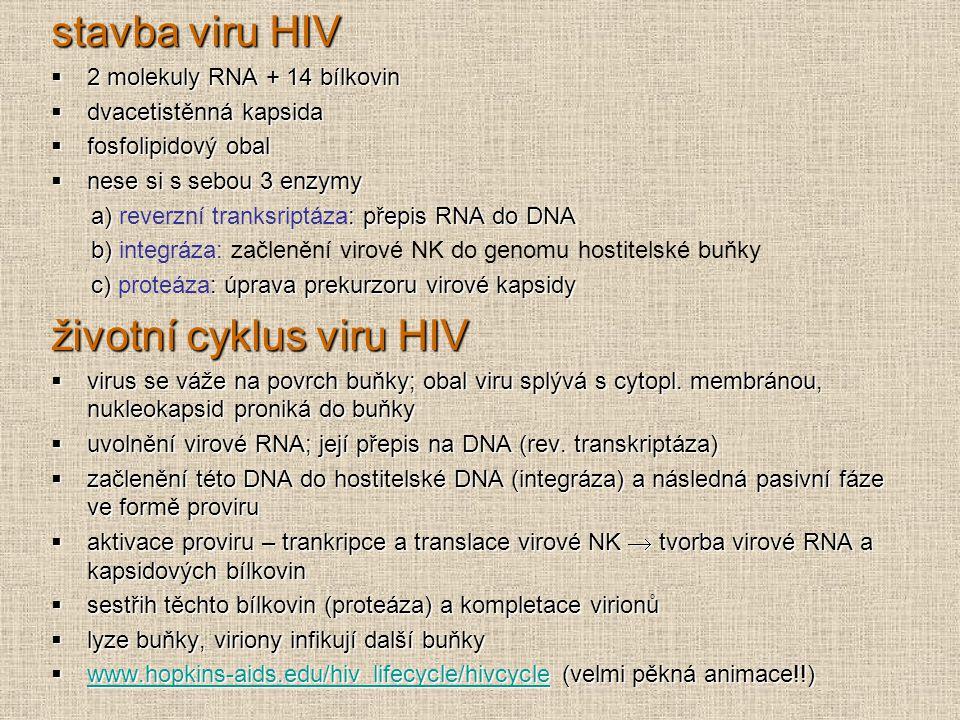 stavba viru HIV  2 molekuly RNA + 14 bílkovin  dvacetistěnná kapsida  fosfolipidový obal  nese si s sebou 3 enzymy a) : přepis RNA do DNA a) rever