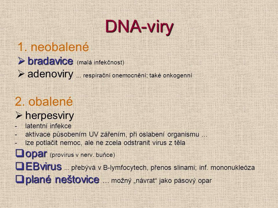 DNA-viry 1. neobalené  bradavice  bradavice (malá infekčnost)  adenoviry... respirační onemocnění; také onkogenní 2. obalené  herpesviry -latentní