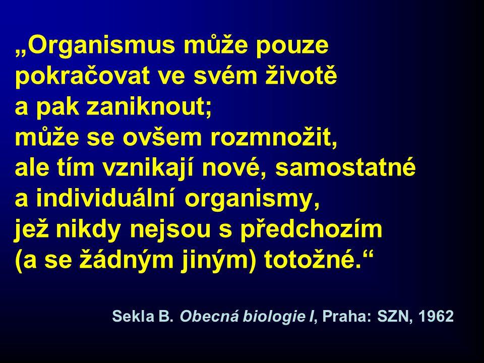 Marta Munzarová Zdravotnická etika od A do Z Praha, Grada 2005