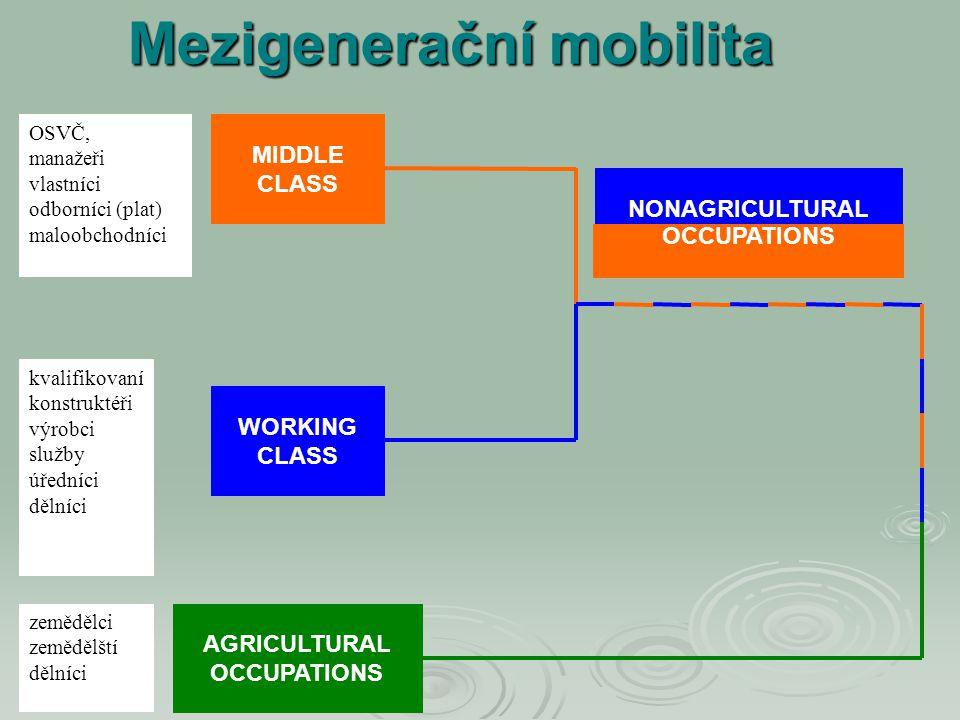 MIDDLE CLASS WORKING CLASS AGRICULTURAL OCCUPATIONS OSVČ, manažeři vlastníci odborníci (plat) maloobchodníci kvalifikovaní konstruktéři výrobci služby