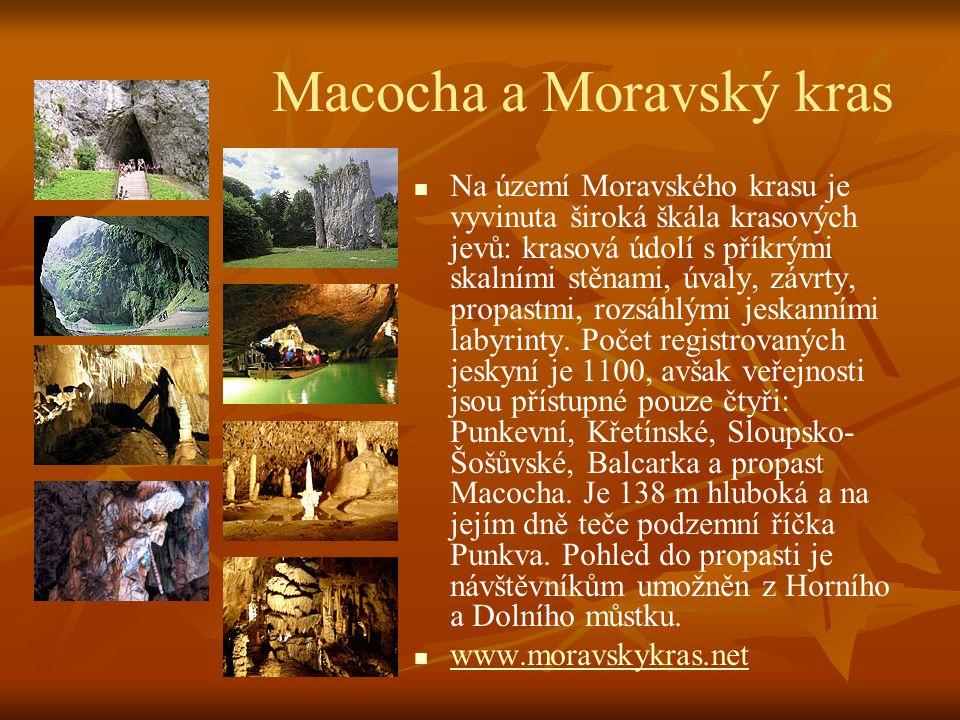 Javoříčské jeskyně   Přírodní rezervace se nachází pouhé 3 kilometry od hradu Bouzova. Chodby jeskyně byly objeveny v roce 1937. Jsou dlouhé 5 km, v