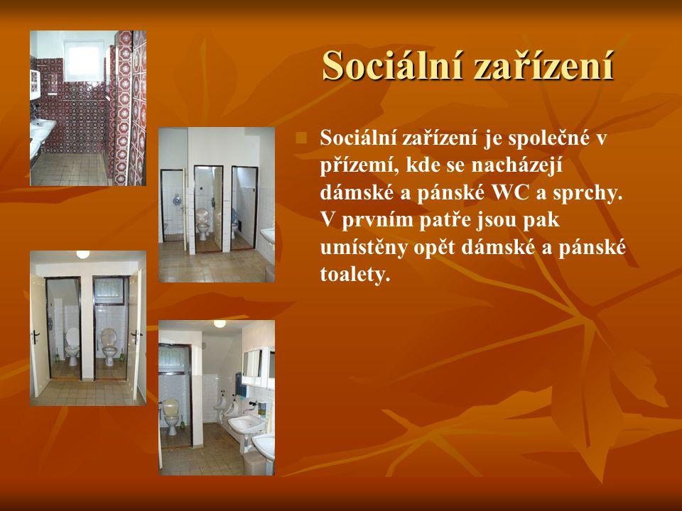 Přízemí   K posezení u krbu, zábavě nebo konzumaci jídla můžete využít členěnou společenskou místnost, která je hlavní částí přízemí budovy.