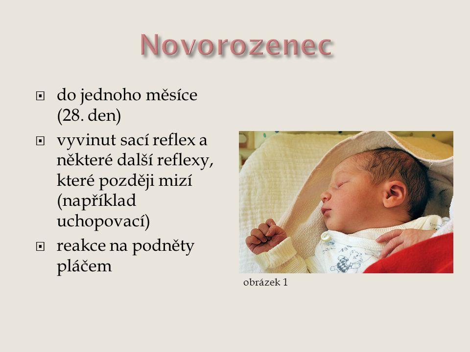  do jednoho měsíce (28. den)  vyvinut sací reflex a některé další reflexy, které později mizí (například uchopovací)  reakce na podněty pláčem obrá