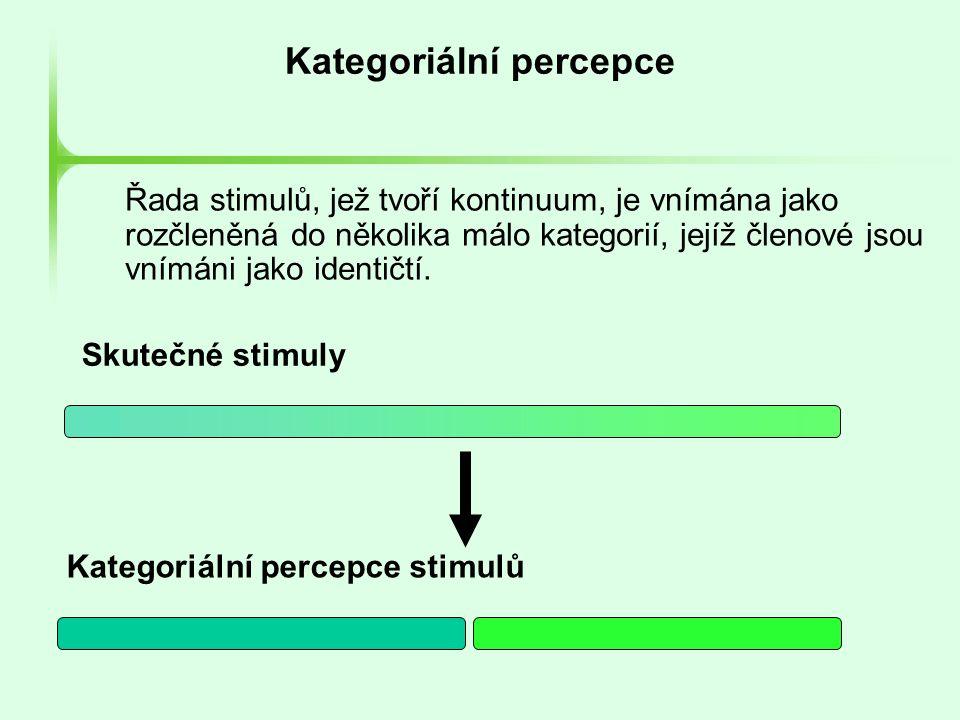 Kategoriální percepce Řada stimulů, jež tvoří kontinuum, je vnímána jako rozčleněná do několika málo kategorií, jejíž členové jsou vnímáni jako identi
