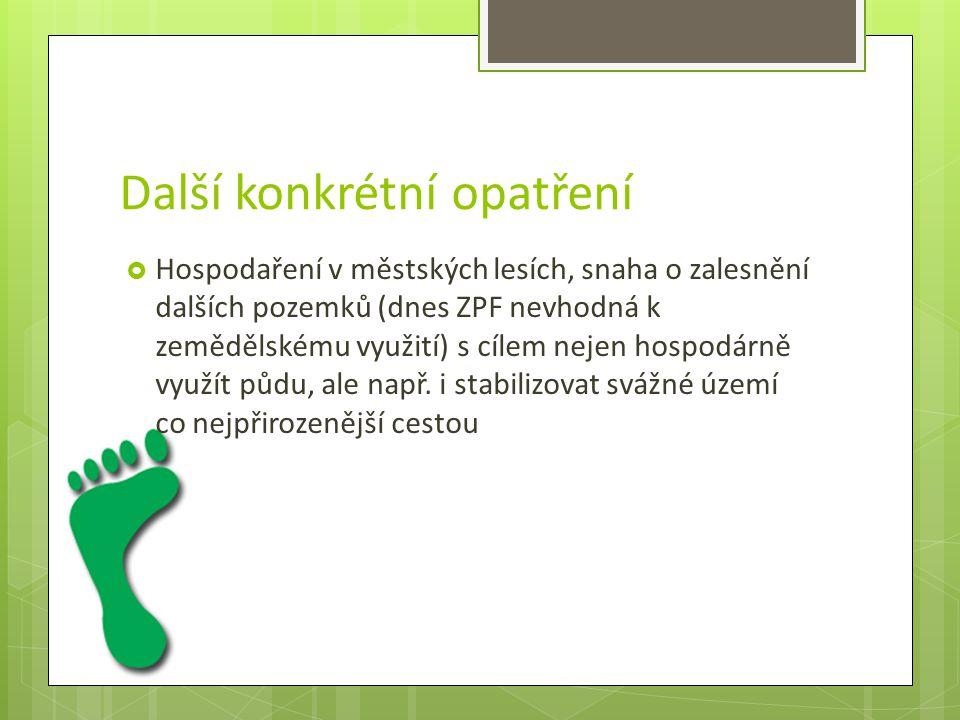  Vzdělávání a výchovu rodin a malých dětí v oblasti ekologie si v Semilech osvojilo občanské sdružení Centrum pro rodinu M.E.D.