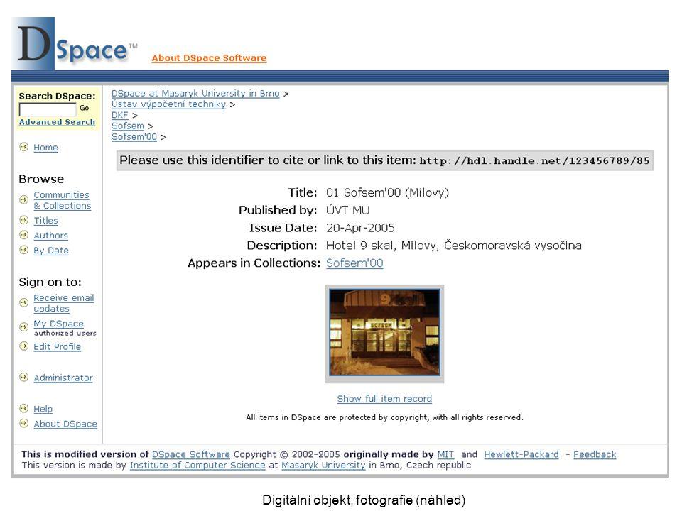 Digitální objekt, fotografie (náhled)