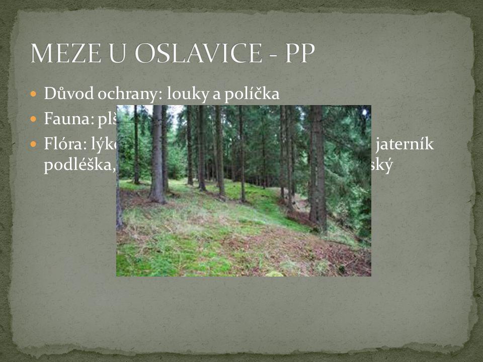  U Pavlínova  Důvod ochrany: populace prstnatce májového, invaze netýkavky žláznaté  Fauna: čolek obecný, č.