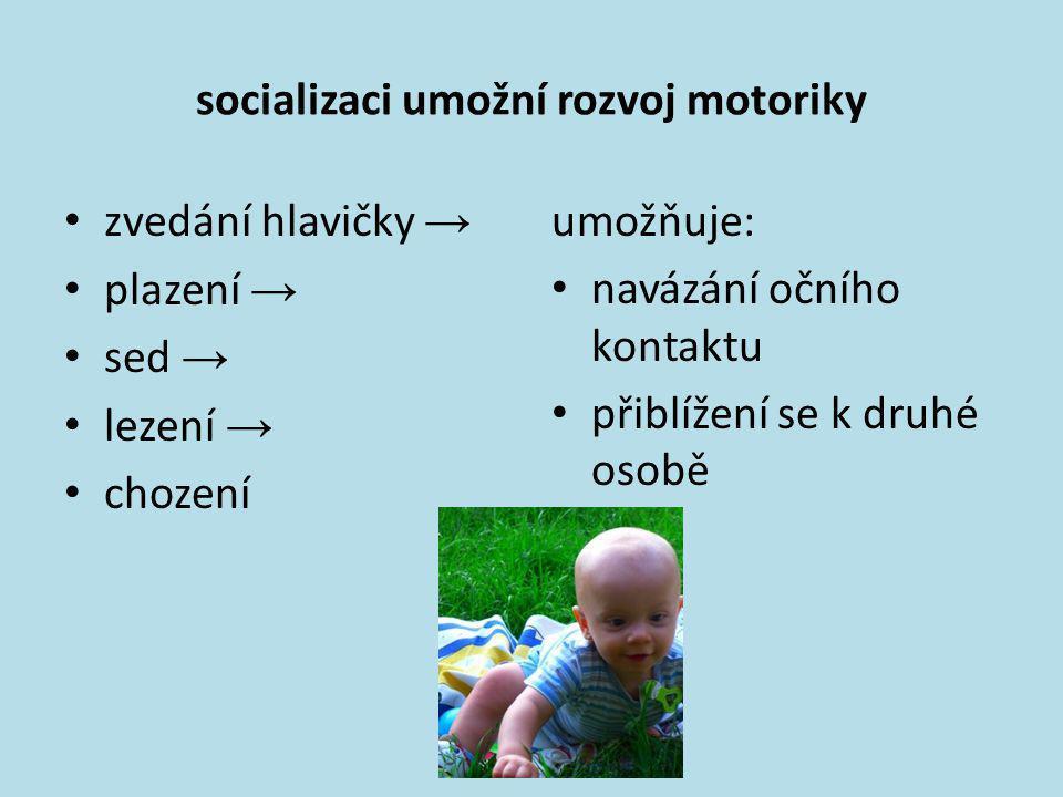 socializaci umožní rozvoj motoriky • zvedání hlavičky → • plazení → • sed → • lezení → • chození umožňuje: • navázání očního kontaktu • přiblížení se
