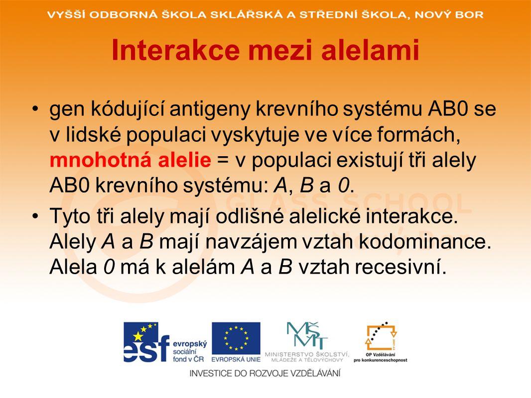 POUŽITÉ ZDROJE: www.glassschool.cz Http://www.wikiskripta.eu/index.php/Alelick%C3%A9_interakce [online].