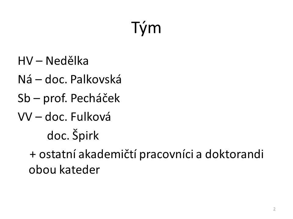 Tým HV – Nedělka Ná – doc. Palkovská Sb – prof. Pecháček VV – doc. Fulková doc. Špirk + ostatní akademičtí pracovníci a doktorandi obou kateder 2