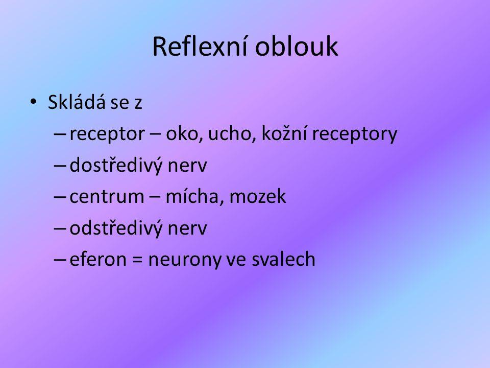 Reflexní oblouk • Skládá se z – receptor – oko, ucho, kožní receptory – dostředivý nerv – centrum – mícha, mozek – odstředivý nerv – eferon = neurony