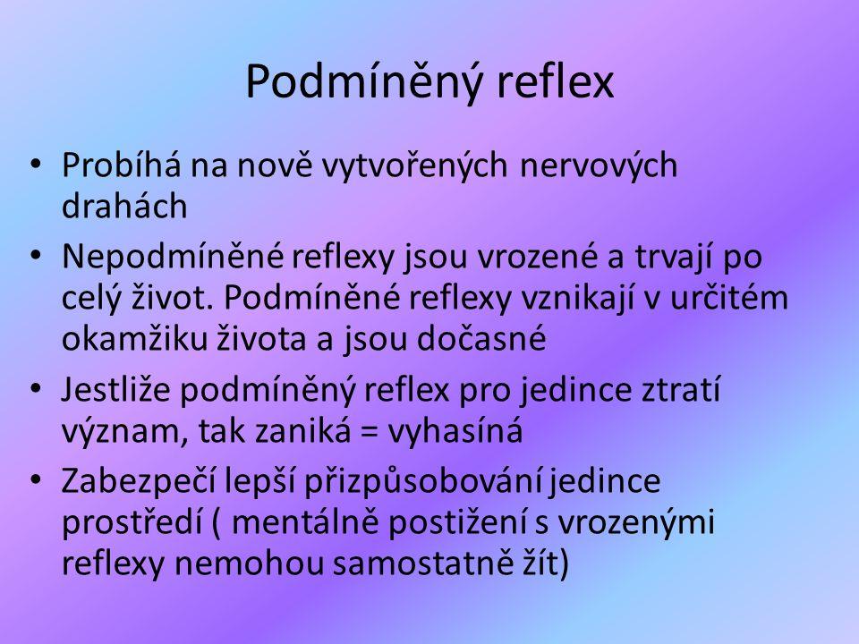 Podmíněný reflex • Probíhá na nově vytvořených nervových drahách • Nepodmíněné reflexy jsou vrozené a trvají po celý život. Podmíněné reflexy vznikají