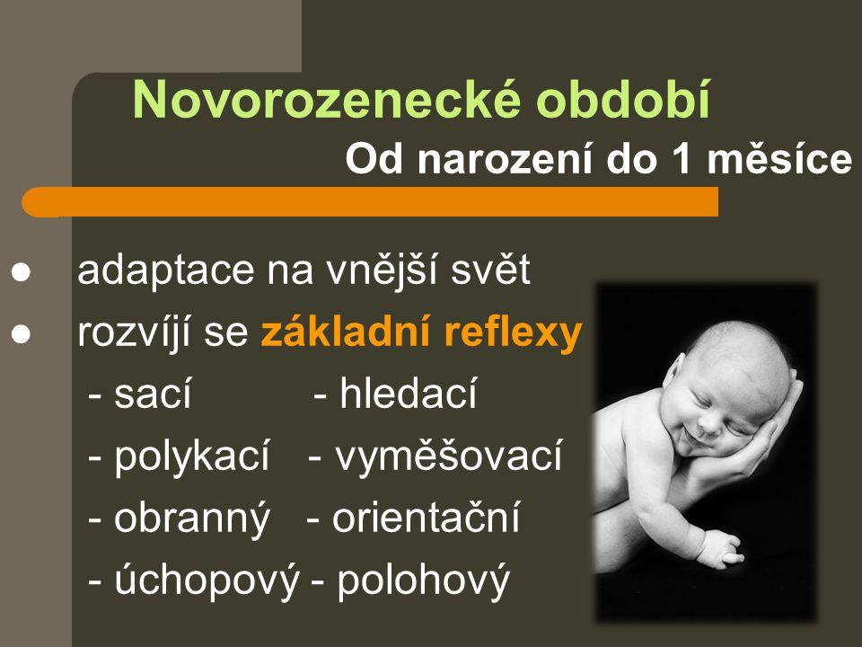 Novorozenecké období Od narození do 1 měsíce  adaptace na vnější svět  rozvíjí se základní reflexy - sací - hledací - polykací - vyměšovací - obrann