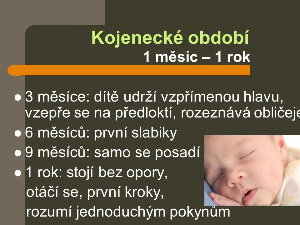 Kojenecké období 1 měsíc – 1 rok  3 měsíce: dítě udrží vzpřímenou hlavu, vzepře se na předloktí, rozeznává obličeje  6 měsíců: první slabiky  9 měs