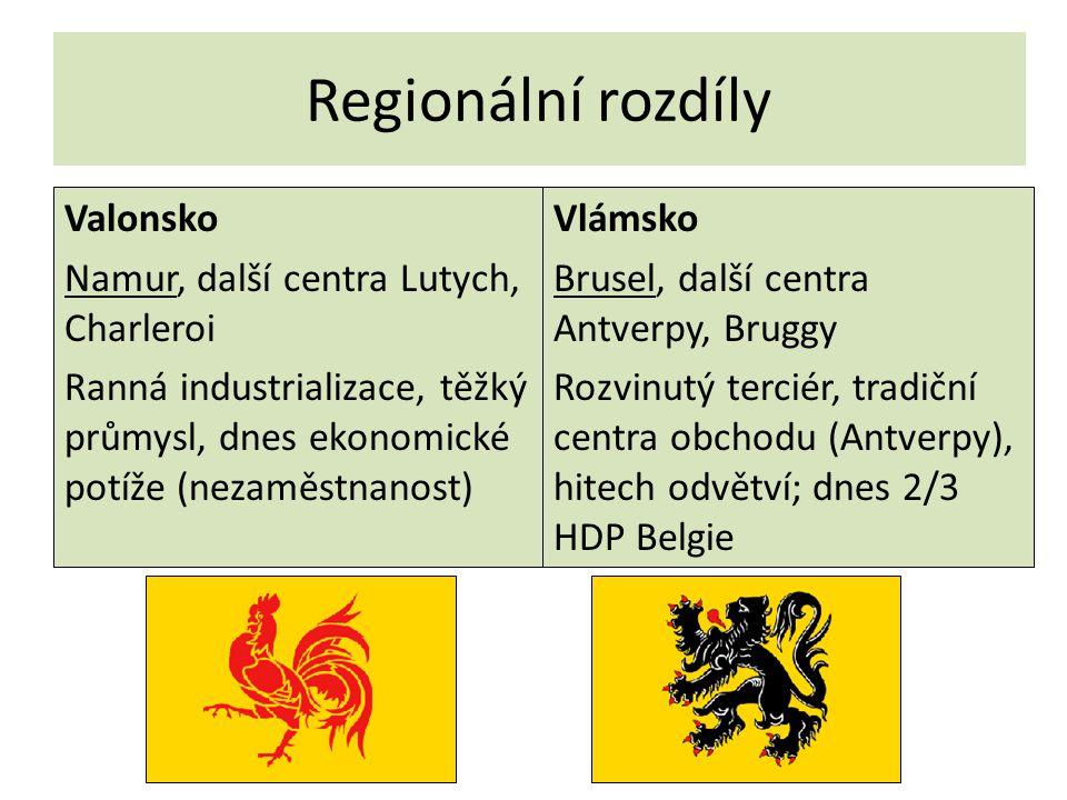Regionální rozdíly Valonsko Namur, další centra Lutych, Charleroi Ranná industrializace, těžký průmysl, dnes ekonomické potíže (nezaměstnanost) Vlámsk