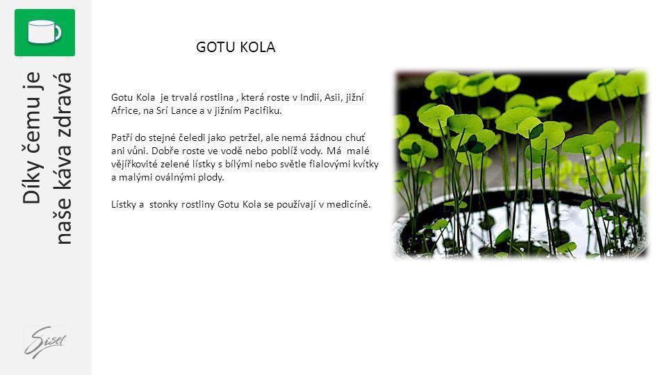 1 GOTU KOLA Gotu Kola je trvalá rostlina, která roste v Indii, Asii, jižní Africe, na Srí Lance a v jižním Pacifiku. Patří do stejné čeledi jako petrž