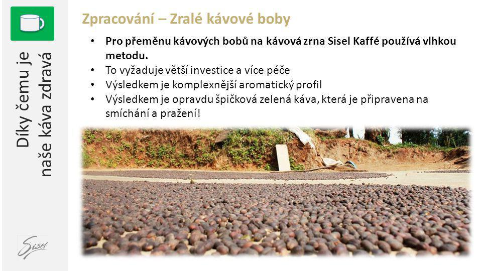 1 Díky čemu je naše káva zdravá Zpracování – Zralé kávové boby • Pro přeměnu kávových bobů na kávová zrna Sisel Kaffé používá vlhkou metodu. • To vyža