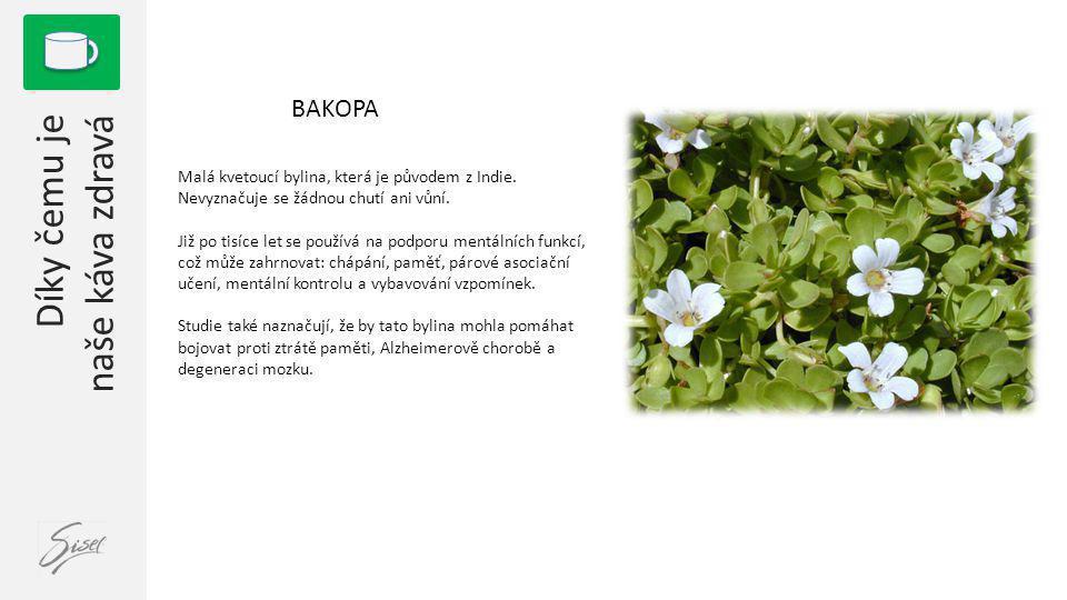1 BAKOPA Malá kvetoucí bylina, která je původem z Indie. Nevyznačuje se žádnou chutí ani vůní. Již po tisíce let se používá na podporu mentálních funk