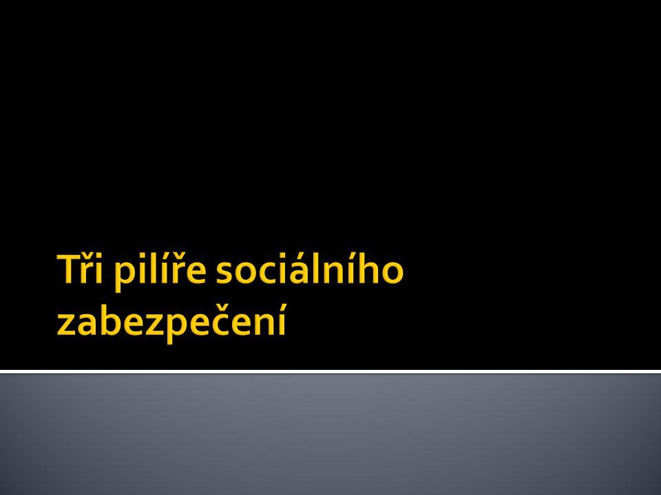  Je v ČR organizováno a garantováno státem.