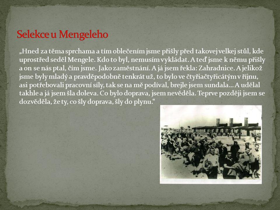  Zpracoval: Petr Prokop  Zdroje: www.pametnaroda.czwww.pametnaroda.cz www.wikipedia.cz www.seniorum.cz