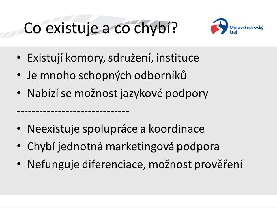 Co existuje a co chybí? • Existují komory, sdružení, instituce • Je mnoho schopných odborníků • Nabízí se možnost jazykové podpory -------------------