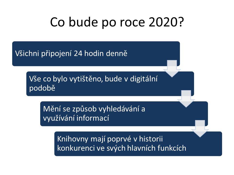 Co bude po roce 2020.