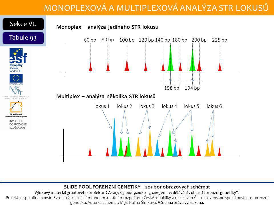 MONOPLEXOVÁ A MULTIPLEXOVÁ ANALÝZA STR LOKUSŮ Sekce VI.
