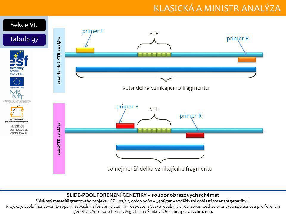 KLASICKÁ A MINISTR ANALÝZA Sekce VI.
