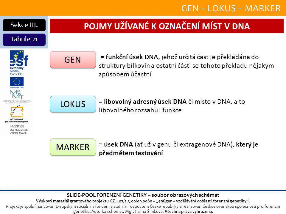 GEN – LOKUS – MARKER Sekce III.
