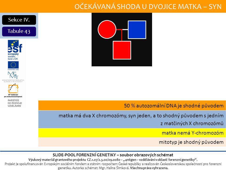OČEKÁVANÁ SHODA U DVOJICE MATKA – SYN Sekce IV.
