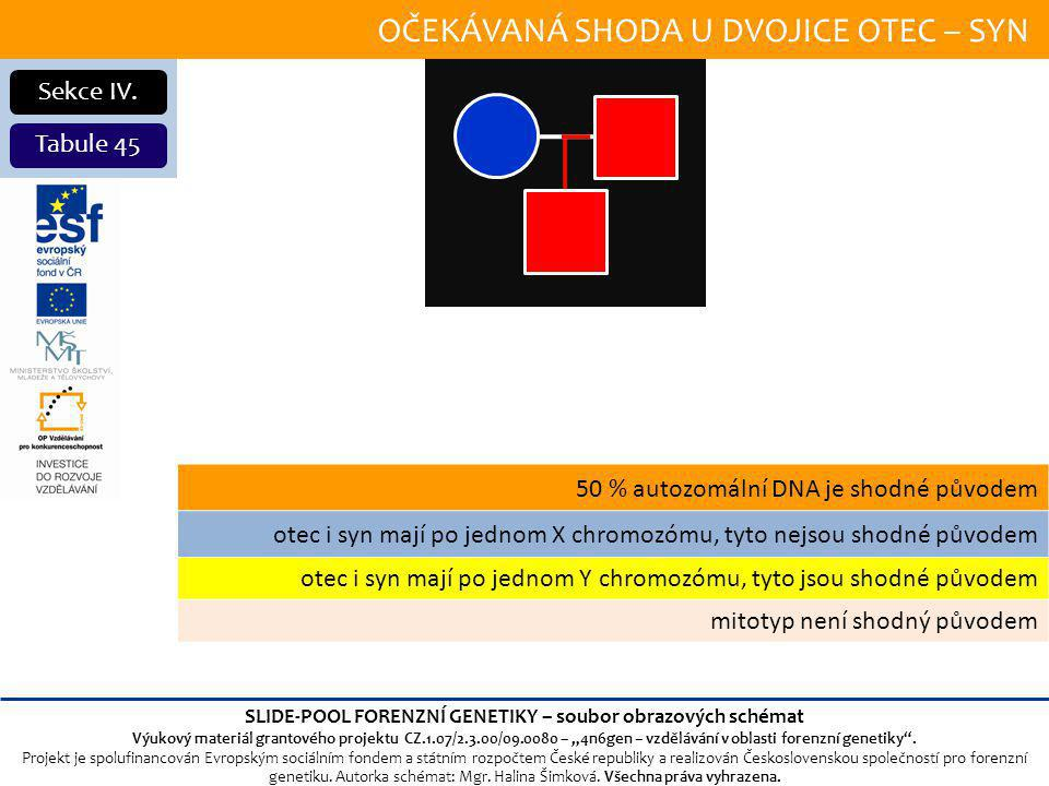 OČEKÁVANÁ SHODA U DVOJICE OTEC – SYN Sekce IV.
