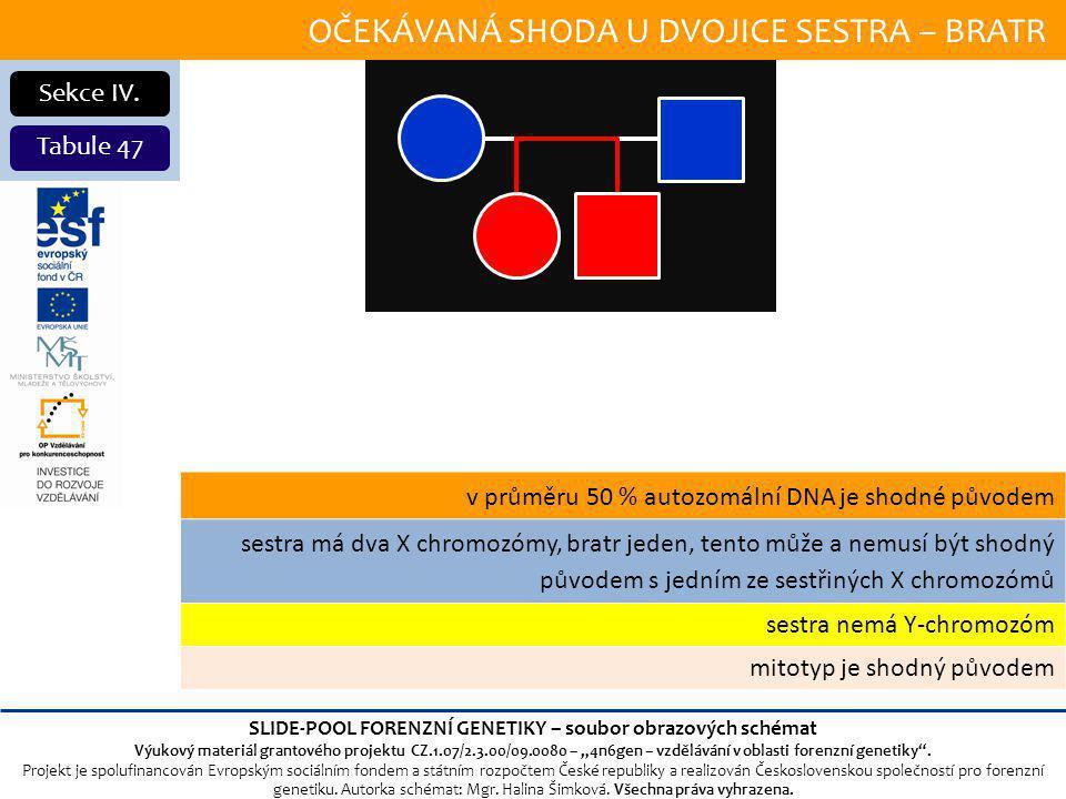 OČEKÁVANÁ SHODA U DVOJICE SESTRA – BRATR Sekce IV.