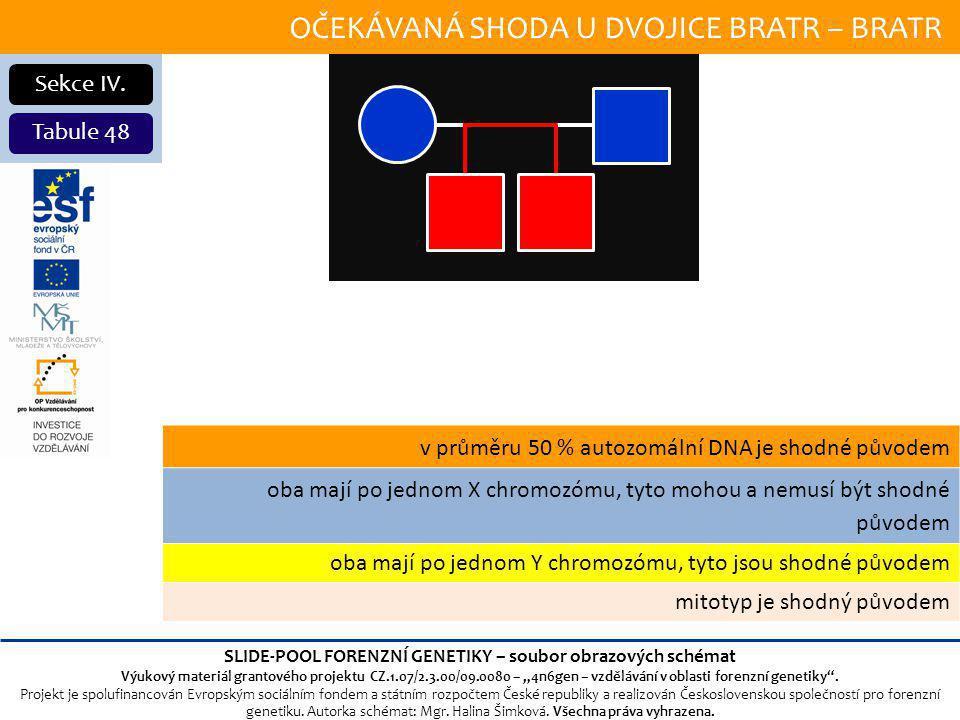 OČEKÁVANÁ SHODA U DVOJICE BRATR – BRATR Sekce IV.