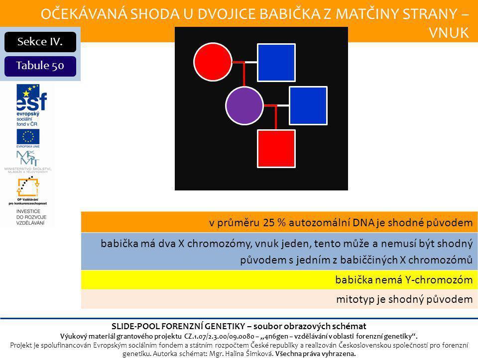 OČEKÁVANÁ SHODA U DVOJICE BABIČKA Z MATČINY STRANY – VNUK Sekce IV.