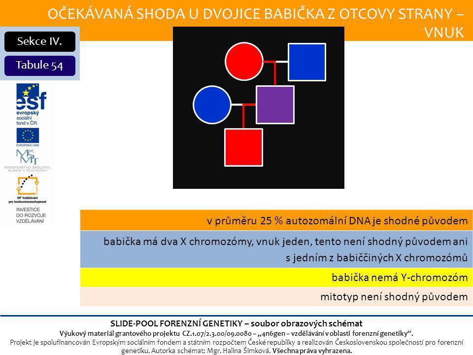 OČEKÁVANÁ SHODA U DVOJICE BABIČKA Z OTCOVY STRANY – VNUK Sekce IV.