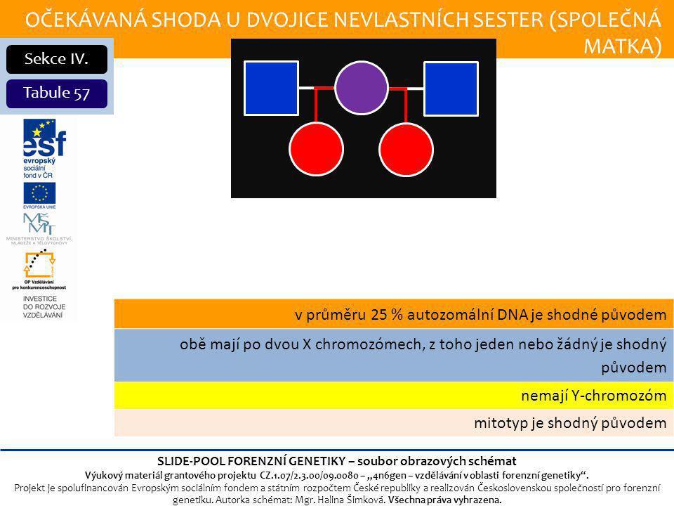 OČEKÁVANÁ SHODA U DVOJICE NEVLASTNÍCH SESTER (SPOLEČNÁ MATKA) Sekce IV.