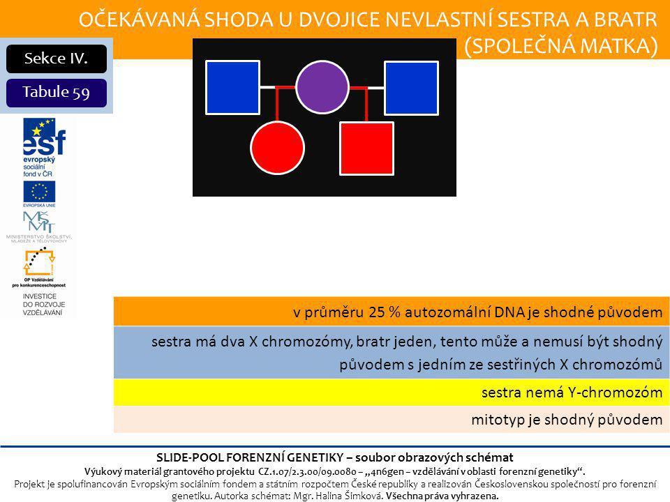 OČEKÁVANÁ SHODA U DVOJICE NEVLASTNÍ SESTRA A BRATR (SPOLEČNÁ MATKA) Sekce IV.