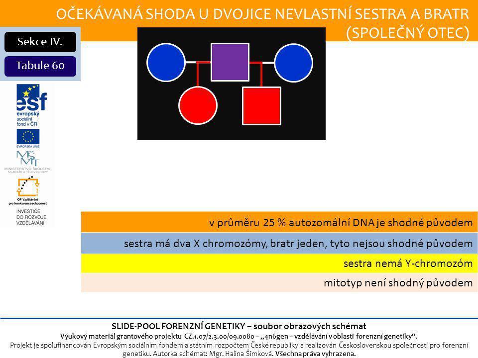 OČEKÁVANÁ SHODA U DVOJICE NEVLASTNÍ SESTRA A BRATR (SPOLEČNÝ OTEC) Sekce IV.